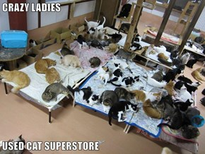 CRAZY LADIES  USED CAT SUPERSTORE
