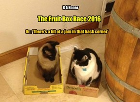The Fruit Box Race 2016