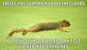 EAGLES MAY SOAR HIGH ABOVE THE CLOUDS  BUT LOW-FLYING SQUIRRELS DON'T GET SUCKED INTO JET ENGINES