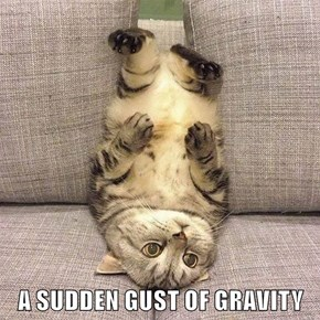 A SUDDEN GUST OF GRAVITY