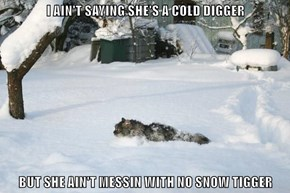 I AIN'T SAYING SHE'S A COLD DIGGER  BUT SHE AIN'T MESSIN WITH NO SNOW TIGGER