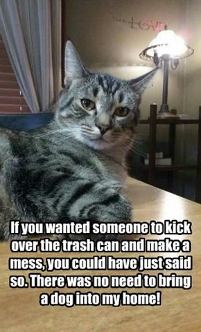 If you wanted someone to kick over the trash can and make a mess, you could have just said so. There was no need to bring a dog into my home!
