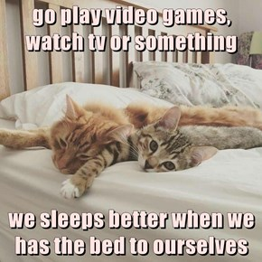 go play video games, watch tv or something  we sleeps better when we has the bed to ourselves