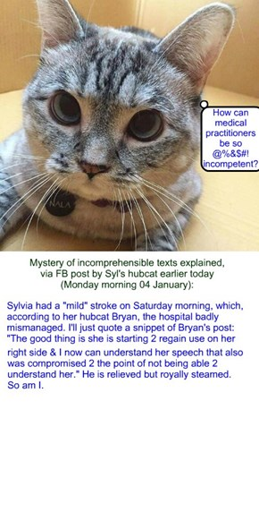 Sylvia texts: mystery explained (Monday 04 January 2016)