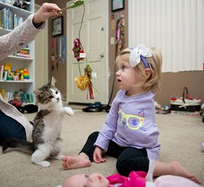 3-Legged Adopted Kitten Becomes Amputee Girl's Best Friend