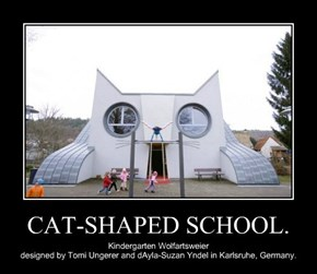 CAT-SHAPED SCHOOL.