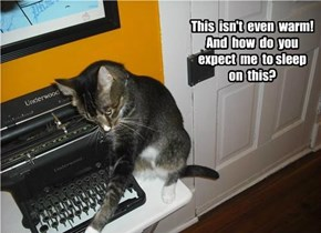 Cats hate retro-tech
