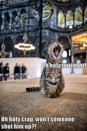 Oh holy niiiiiight!        Oh holy crap, won't someone shut him up?!