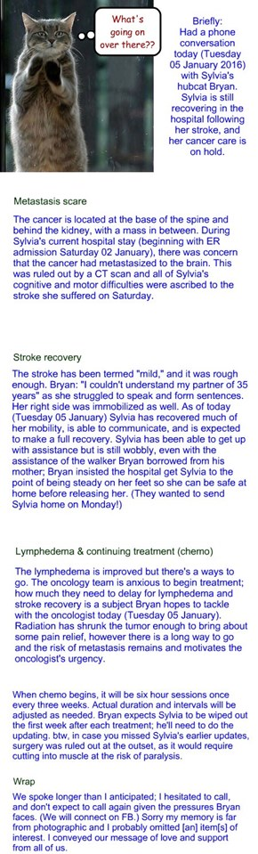 Bryan's Sylvia update, Tuesday 05 January 2016