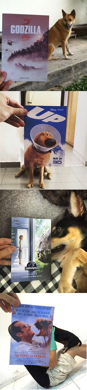 Artist Gets Creative With Movie Posters Held Over Real Dogs