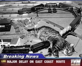 Breaking News - MAJOR  DELAY  ON  EAST  COAST   ROUTE