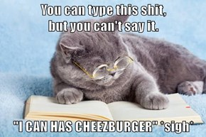 """You can type this shit,                                   but you can't say it.  """"I CAN HAS CHEEZBURGER"""" *sigh*"""