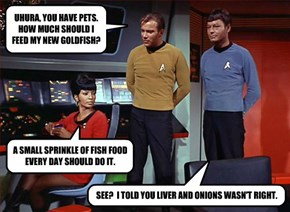 UHURA, YOU HAVE PETS.  HOW MUCH SHOULD I FEED MY NEW GOLDFISH?