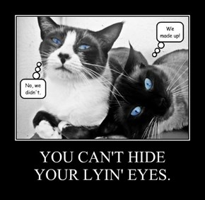 YOU CAN'T HIDE YOUR LYIN' EYES.