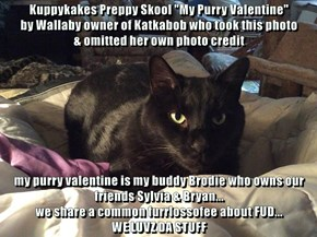 "Kuppykakes Preppy Skool ""My Purry Valentine""                     by Wallaby owner of Katkabob who took this photo                     & omitted her own photo credit  my purry valentine is my buddy Brodie who owns our friends Sylvia & Bryan..."