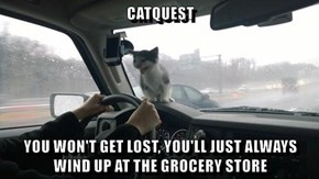 Catlogic: GPS =Grocery Positioning System