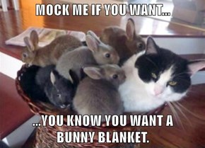 MOCK ME IF YOU WANT...  ...YOU KNOW YOU WANT A                      BUNNY BLANKET.