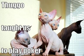 Thuggo taught us to play poker