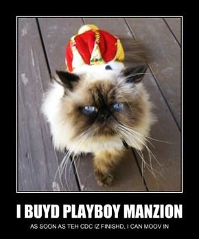 I BUYD PLAYBOY MANZION