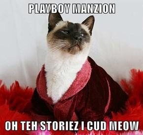 PLAYBOY MANZION  OH TEH STORIEZ I CUD MEOW