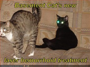 Basement Cat's new  laser hemorrhoid treatment