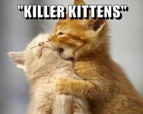 """""""KILLER KITTENS"""""""