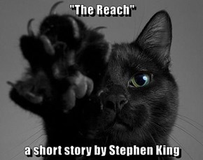 """The Reach""  a short story by Stephen King"