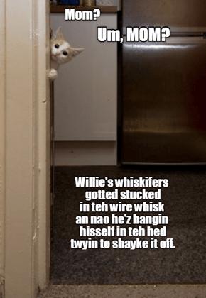 Willie's wire-whisked whiskifers