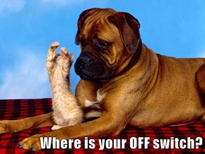 Where is your OFF switch?