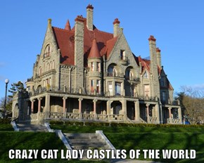 CRAZY CAT LADY CASTLES OF THE WORLD
