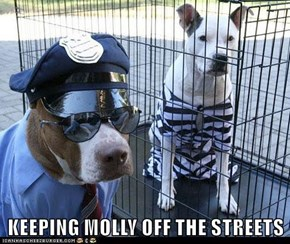 KEEPING MOLLY OFF THE STREETS