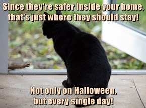 Since they're safer inside your home, that's just where they should stay!   Not only on Halloween,                                              but every single day!