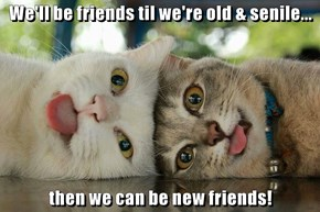 We'll be friends til we're old & senile...  then we can be new friends!