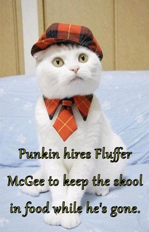 Punkin hires Fluffer McGee to keep the skool in food while he's gone.