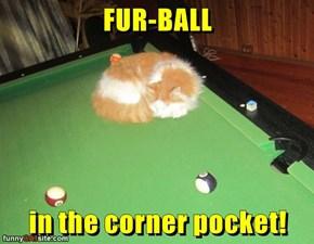 FUR-BALL   in the corner pocket!