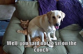Well, you said not to sit on the couch.