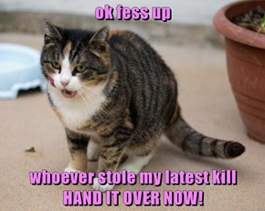ok fess up  whoever stole my latest kill                     HAND IT OVER NOW!