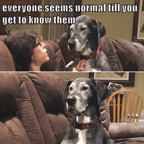 everyone seems normal till you get to know them