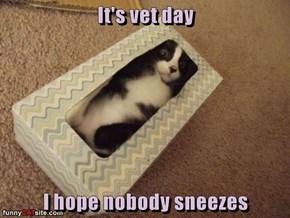 It's vet day  I hope nobody sneezes