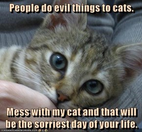 People do evil things to cats.   Mess with my cat and that will be the sorriest day of your life.