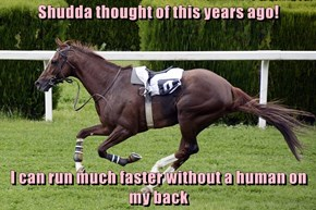Shudda thought of this years ago!  I can run much faster without a human on my back