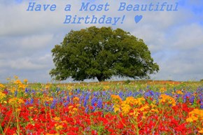 Have  a  Most  Beautiful  Birthday!  ♥