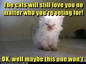 The cats will still love you no matter who you're voting for!  OK, well maybe this one won't.