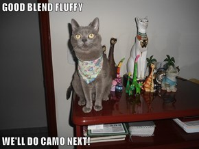 GOOD BLEND FLUFFY           WE'LL DO CAMO NEXT!