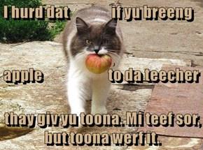 I hurd dat               if yu breeng apple                       to da teecher thay giv yu toona. Mi teef sor, but toona werf it.