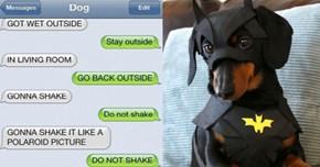 19 Times BatDog's Conversations Just Killed Us