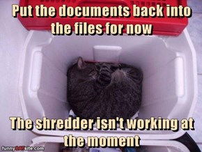 Put the documents back into the files for now  The shredder isn't working at the moment