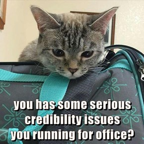 you has some serious credibility issues                     you running for office?
