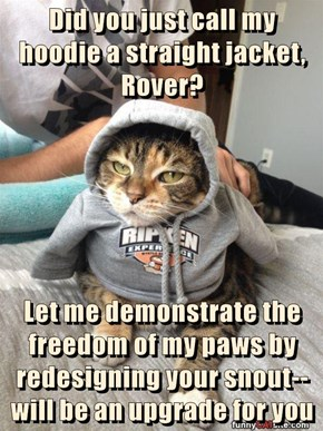 Did you just call my hoodie a straight jacket, Rover?  Let me demonstrate the freedom of my paws by redesigning your snout--will be an upgrade for you