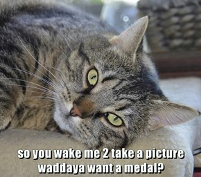 so you wake me 2 take a picture                                         waddaya want a medal?